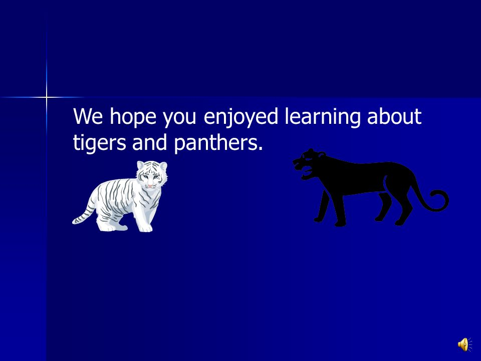 We hope you enjoyed learning about tigers and panthers.