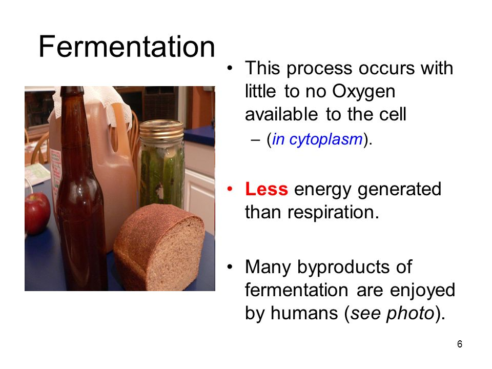 Fermentation ( without O 2 ) Alcoholic Products: –Alcohol –CO 2 –Small amount of energy Important to bakers & brewers.