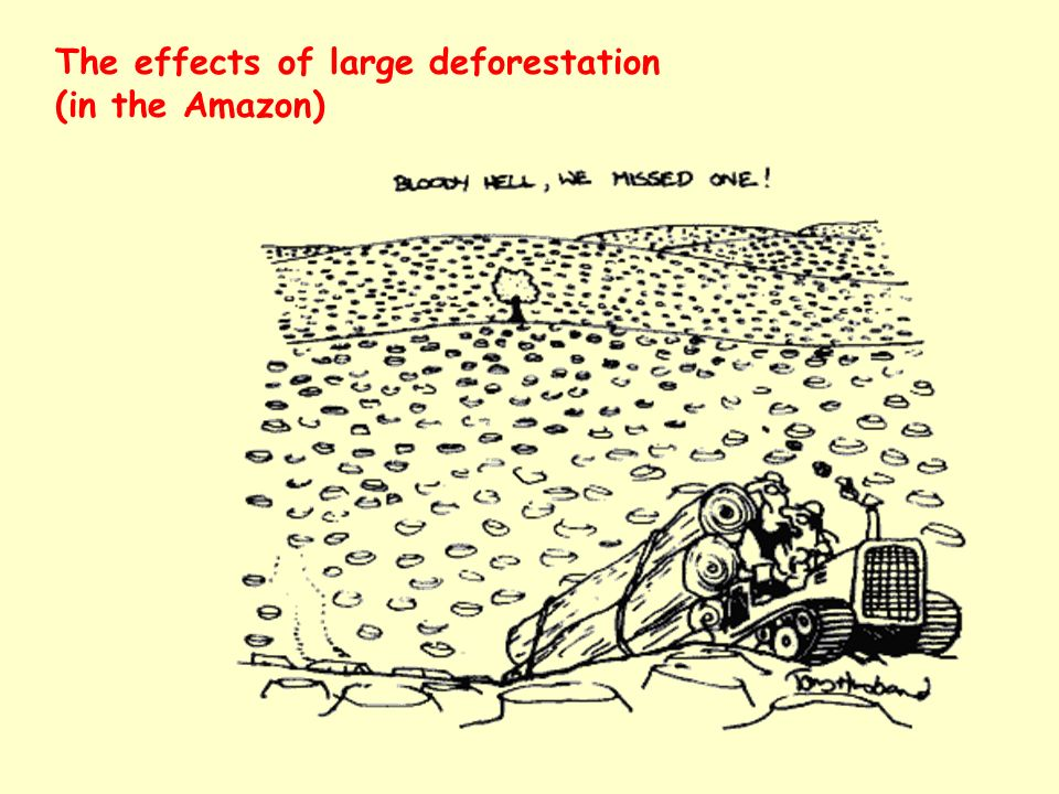 The effects of large deforestation (in the Amazon)