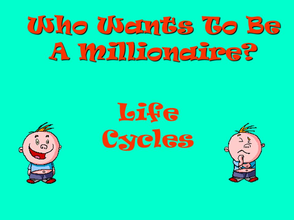 Who Wants To Be A Millionaire? Life Cycles