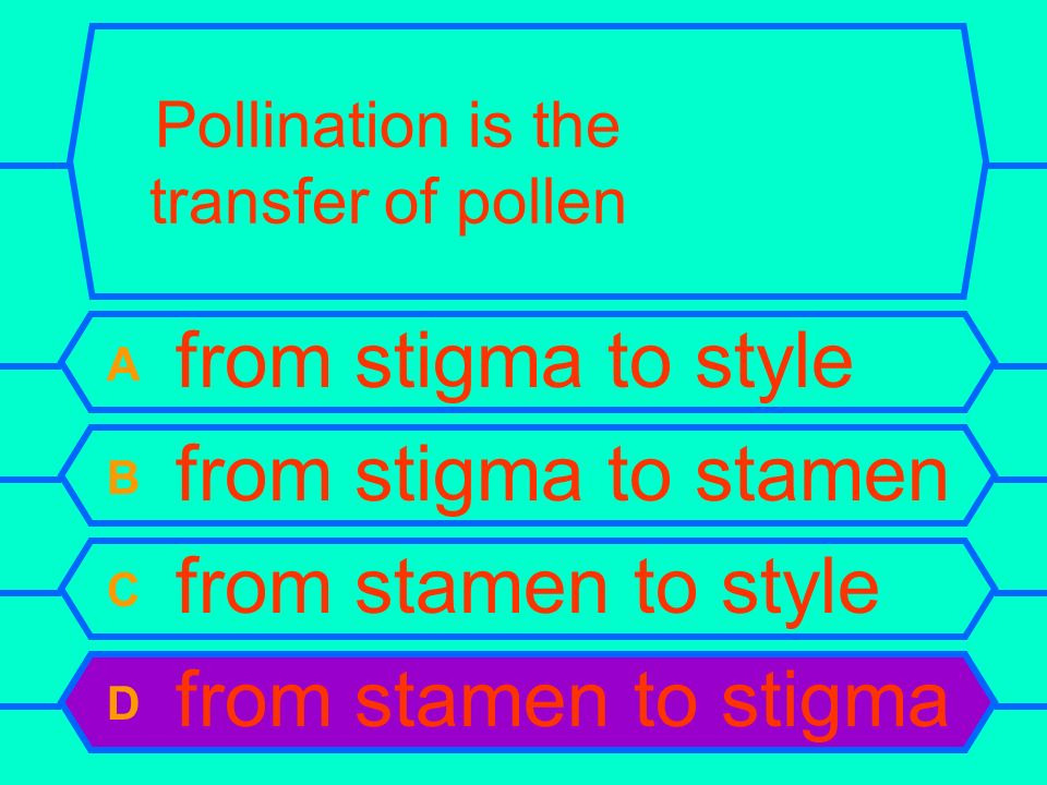 Pollination is the transfer of pollen A from stigma to style B from stigma to stamen C from stamen to style D from stamen to stigma