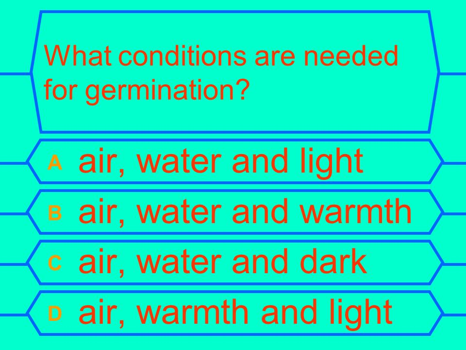 What conditions are needed for germination.