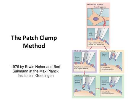 The Patch Clamp Method 1976 by Erwin Neher and Bert Sakmann at the Max Planck Institute in Goettingen.