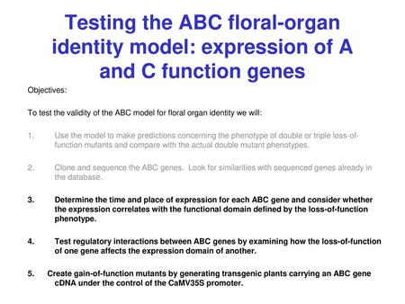 Testing the ABC floral-organ identity model: expression of A and C function genes Objectives: To test the validity of the ABC model for floral organ identity.