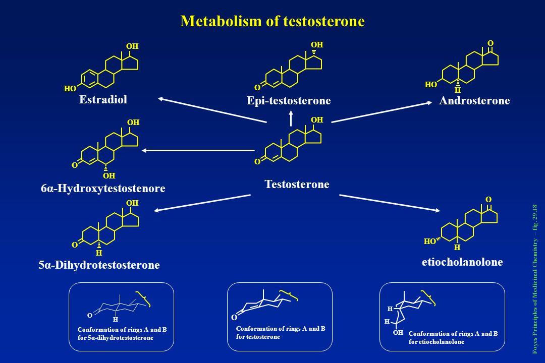 CH 3 H3CH3C N H3CH3C N O O OH CH 2 -CH 2 CH 2 OHC CCH 3 MifepristroneOnapristrone Foyes Principles of Medicinal Chemistry – pag.