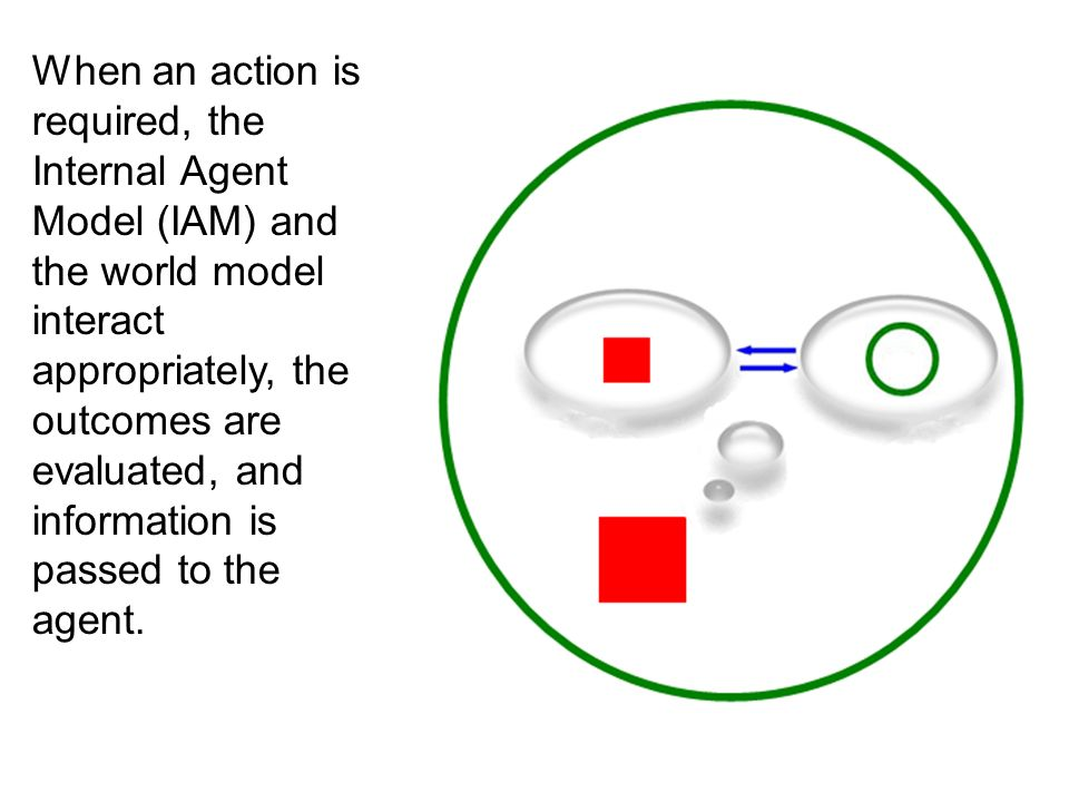 In between times, the IAM and the world model are constantly updated.