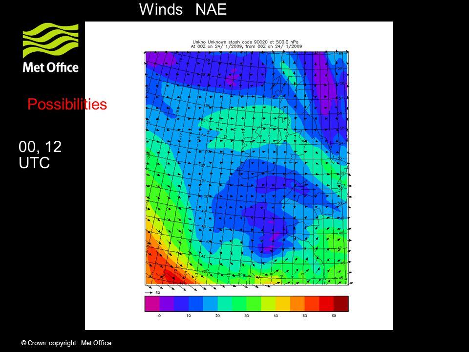 © Crown copyright Met Office w RH PV u,v (P levels) Precip, PMSL, freezing level Forecast variables / flight information e.g.