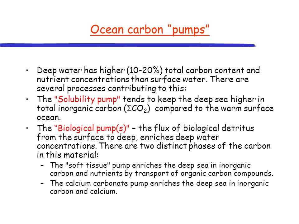 Ocean biological pumps Falling dead organisms, faecal pellets and detritus are remineralised at depth.