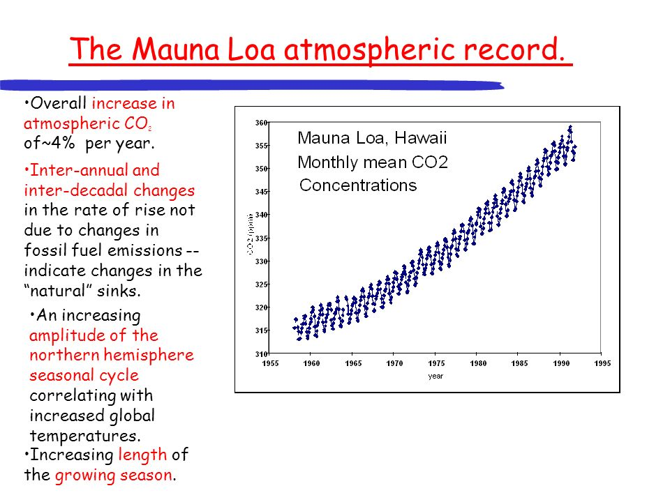 Variation in the growth rate of atmospheric CO 2, 1957-1999 Rate of growth is highly variable – not due to change in fossil fuel source.