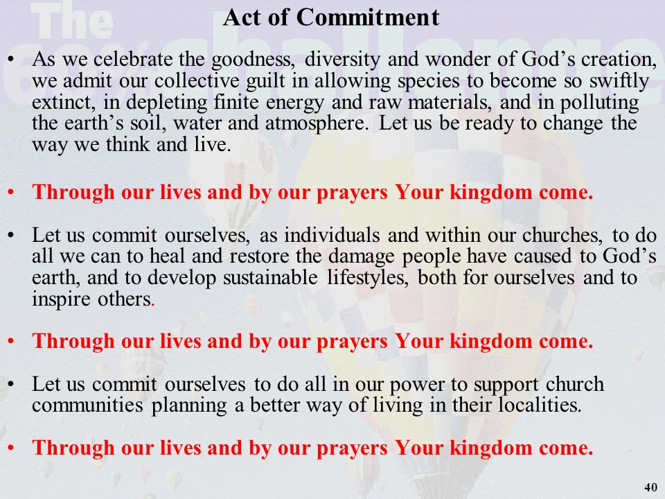 41 Act of Commitment Let each of us commit ourselves to play our part and take what action we can to cherish Gods creation.