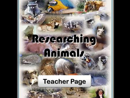Researching Animals Teacher Page Teacher Page Teacher Page Teacher Page.