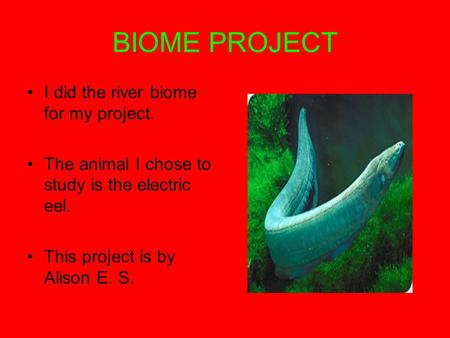 BIOME PROJECT I did the river biome for my project. The animal I chose to study is the electric eel. This project is by Alison E. S.