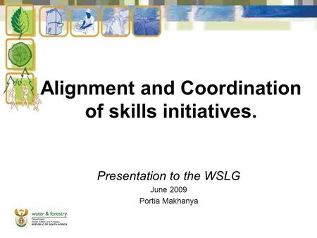Alignment and Coordination of skills initiatives. Presentation to the WSLG June 2009 Portia Makhanya.