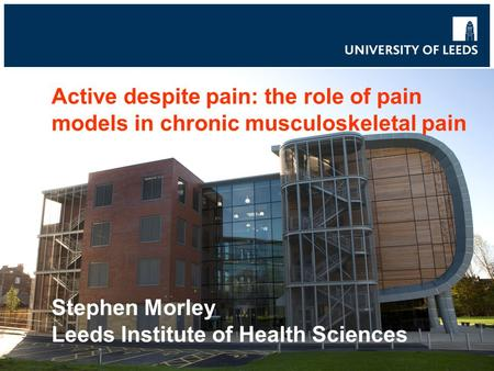 Active despite pain: the role of pain models in chronic musculoskeletal pain Stephen Morley Leeds Institute of Health Sciences.