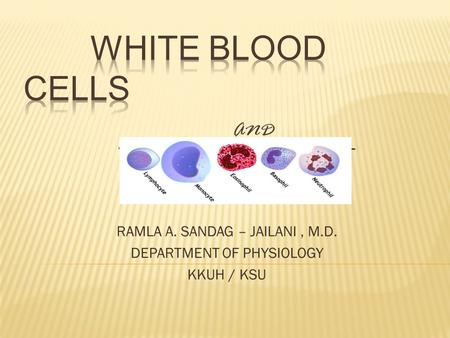 RAMLA A. SANDAG – JAILANI, M.D. DEPARTMENT OF PHYSIOLOGY KKUH / KSU.