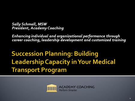 Sally Schmall, MSW President, Academy Coaching Enhancing individual and organizational performance through career coaching, leadership development and.