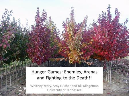 Hunger Games: Enemies, Arenas and Fighting to the Death!! Whitney Yeary, Amy Fulcher and Bill Klingeman University of Tennessee.