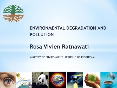 ENVIRONMENTAL DEGRADATION AND POLLUTION Rosa Vivien Ratnawati MINISTRY OF ENVIRONMENT, REPUBLIC OF INDONESIA.