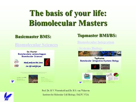The basis of your life: Biomolecular Masters Basicmaster BMS: Biomolecular Sciences Biomolecular Sciences Topmaster BMI/BS: Biomolecular Integration Biomolecular.