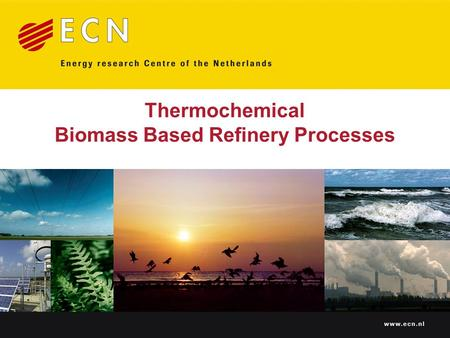 Thermochemical Biomass Based Refinery Processes. Technological status & perspectives Presented at Biorefinica 2006 (11-12 October 2006, Osnabrück, Germany)
