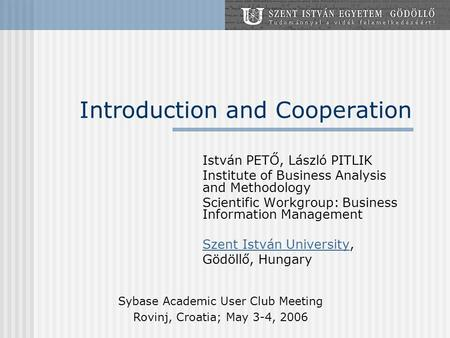 Introduction and Cooperation István PETŐ, László PITLIK Institute of Business Analysis and Methodology Scientific Workgroup: Business Information Management.