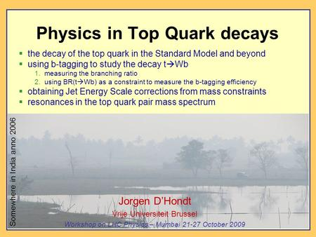 Physics in Top Quark decays  the decay of the top quark in the Standard Model and beyond  using b-tagging to study the decay t  Wb 1. measuring the.