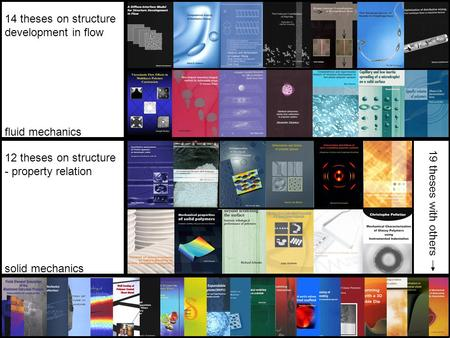 14 theses on structure development in flow 12 theses on structure - property relation 19 theses with others fluid mechanics solid mechanics.