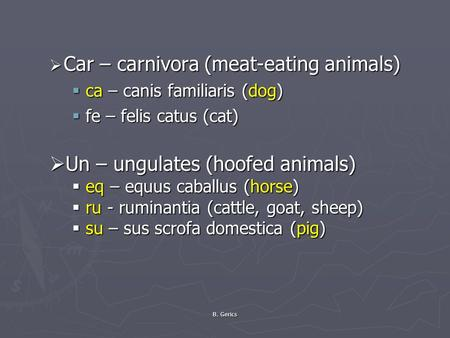 B. Gerics  Car – carnivora (meat-eating animals)  ca – canis familiaris (dog)  fe – felis catus (cat)  Un – ungulates (hoofed animals)  eq – equus.