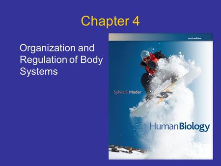 Chapter 4 Organization and Regulation of Body Systems.