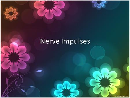 Nerve Impulses. Resting Potentials Electrical potential across plasma membrane of a cell Not conducting impulse.