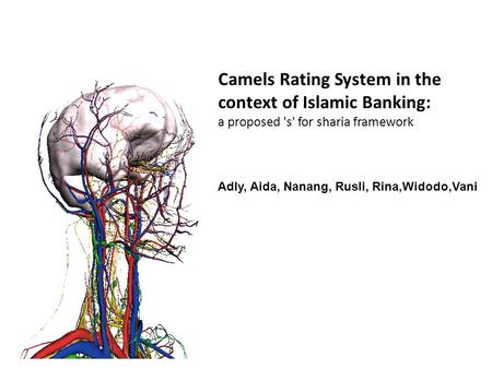 Camels Rating System in the context of Islamic Banking: a proposed 's' for sharia framework Adly, Aida, Nanang, Rusli, Rina,Widodo,Vani.