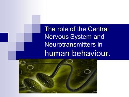 The role of the Central Nervous System and Neurotransmitters in human behaviour.