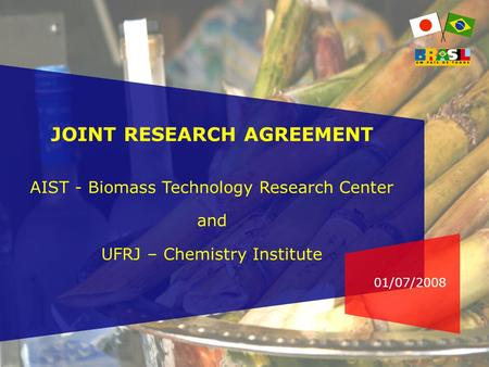 01/07/2008 JOINT RESEARCH AGREEMENT AIST - Biomass Technology Research Center and UFRJ – Chemistry Institute.