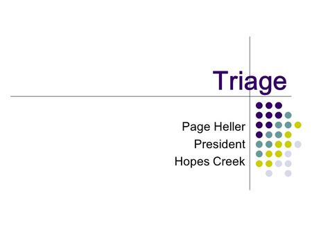 Triage Page Heller President Hopes Creek. HCC TechAssess Perform your evaluation and prepare something you can use as a communication tool at the same.