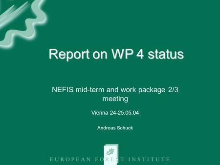 Report on WP 4 status NEFIS mid-term and work package 2/3 meeting Vienna 24-25.05.04 Andreas Schuck.