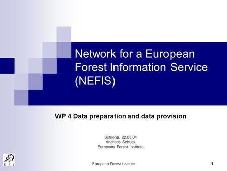 European Forest Institute 1 Network for a European Forest Information Service (NEFIS) WP 4 Data preparation and data provision Solsona, 22.03.04 Andreas.