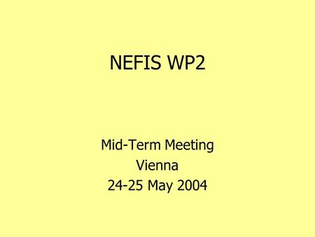 NEFIS WP2 Mid-Term Meeting Vienna 24-25 May 2004.