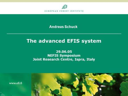 Andreas Schuck The advanced EFIS system 29.06.05 NEFIS Symposium Joint Research Centre, Ispra, Italy.