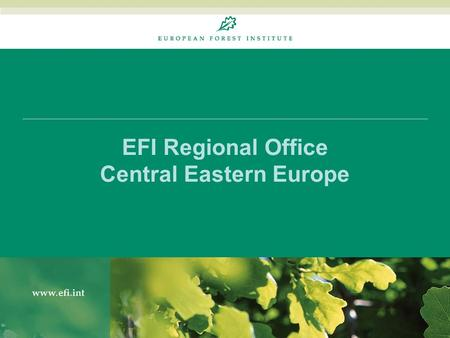 EFI Regional Office Central Eastern Europe. Work Programme 2009-2013 16 August 20142 Organisation and Work Areas Forest sector policy & economics incl.