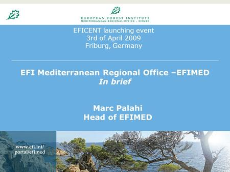 EFICENT launching event 3rd of April 2009 Friburg, Germany EFI Mediterranean Regional Office –EFIMED In brief Marc Palahi Head of EFIMED.