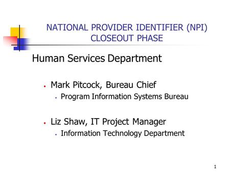 1 NATIONAL PROVIDER IDENTIFIER (NPI) CLOSEOUT PHASE Human Services Department Mark Pitcock, Bureau Chief Program Information Systems Bureau Liz Shaw, IT.