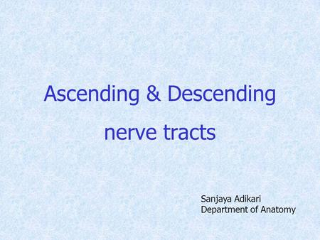 Ascending & Descending nerve tracts