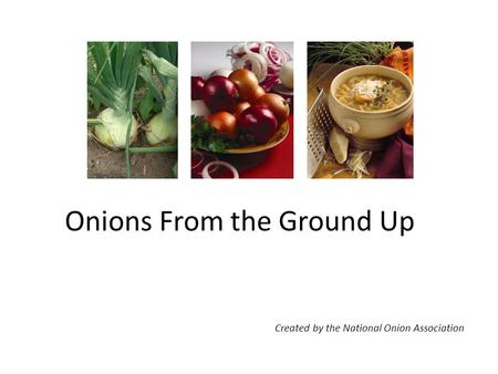 Onions From the Ground Up Created by the National Onion Association.
