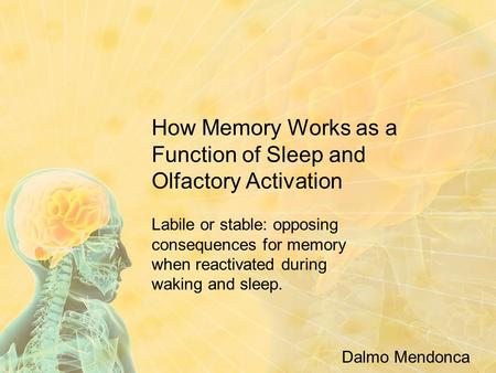 How Memory Works as a Function of Sleep and Olfactory Activation Labile or stable: opposing consequences for memory when reactivated during waking and.