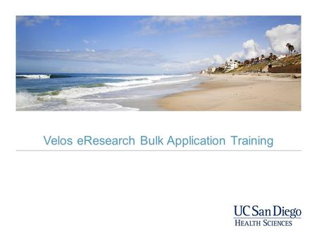 Velos eResearch Bulk Application Training. What is a Bulk Account? A bulk account is the mechanism used to charge Medical Center services to your study.