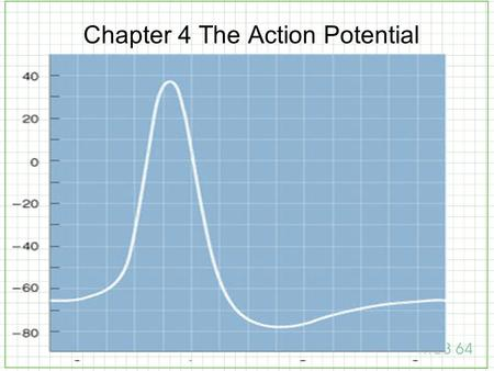 Chapter 4 The Action Potential. Nernst Relation [ion] out [ion] in E = 61.54 mV log 10.