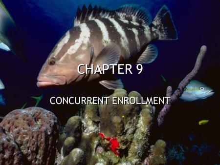 CHAPTER 9 CONCURRENT ENROLLMENT. ACIDS AND BASES WEAK ACIDS AND BASES ONLY A FEW IONS ARE FORMED DEFINITIONS –Arrhenius - Acid contains H + ions and Bases.