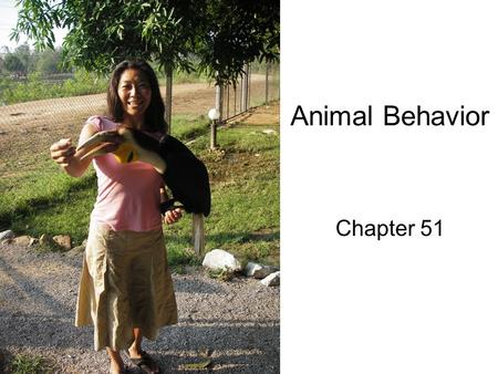 Animal Behavior Chapter 51. Def: The study of how specific behaviors increase reproductive success a)Learned behavior (nurture) – environmental and ecological.