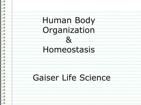Human Body Organization & Homeostasis