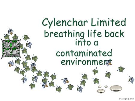 Copyright © 2013 Cylenchar Limited breathing life back into a contaminated environment.